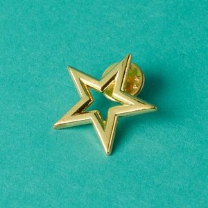 Starlight Children's Foundation Star Pin